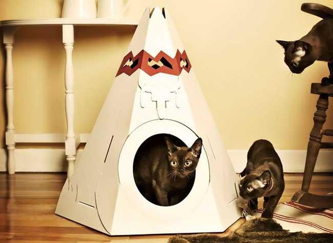 jouet chat carton