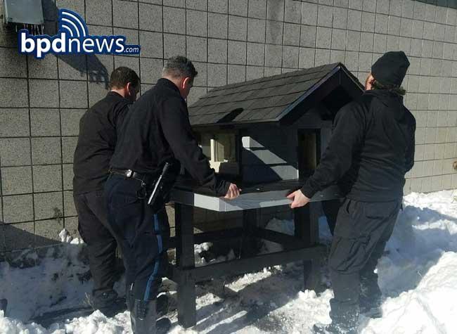 , La Police Fabrique une Superbe Maison à un Chat Devenu sa Mascotte