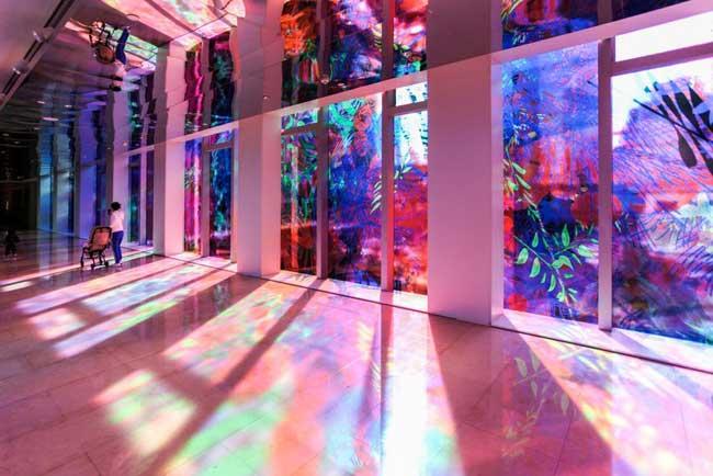 Fleurs, Jardins Virtuels en Fleurs de Lumière pour une Installation d'Art (video)