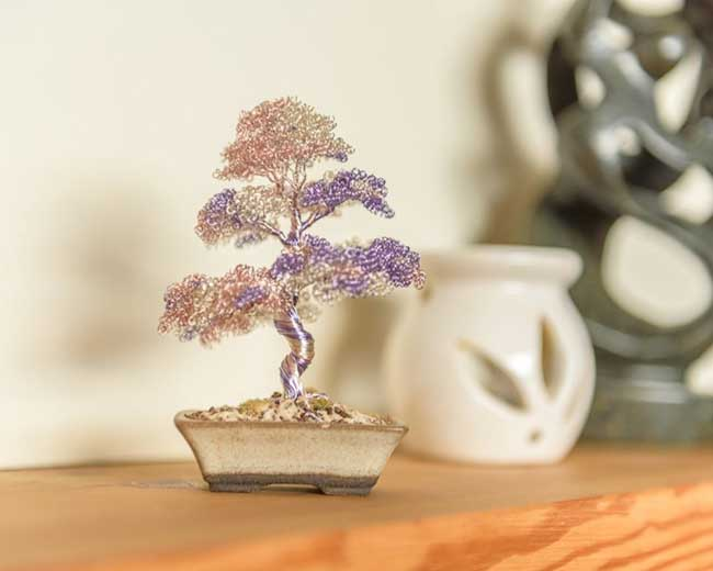 bonsai - fil de fer, Avec du Fil de Fer il Sculpte des Bonsaïs Plus vrais que Nature