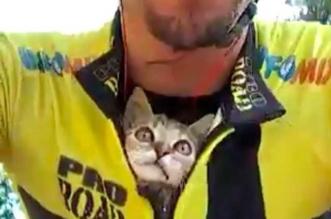 Cycliste Chaton Viitor Fonseca