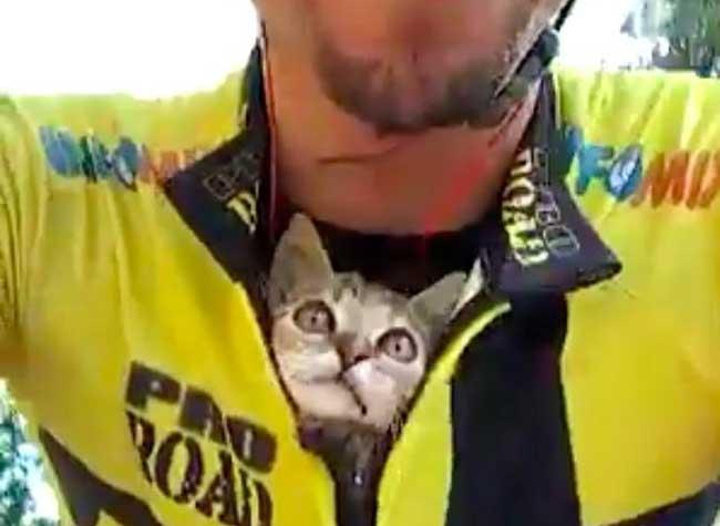 , Pour Remercier ce Cycliste qui l'a Sauvé ce Chaton l'Embrasse tout le Long du Trajet (video)