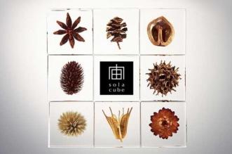 Sola Cubes Nature Acrylique