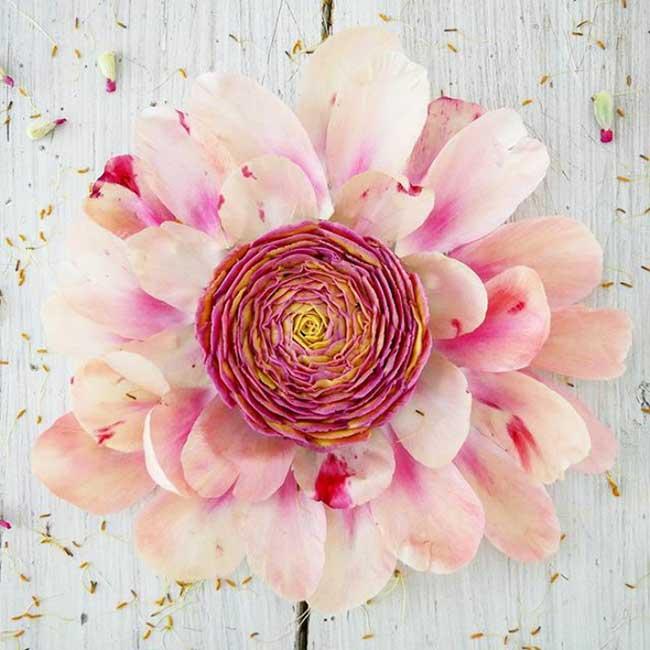 , Gateaux Vegan Crus aux Airs de Vrais Bouquets de Fleurs