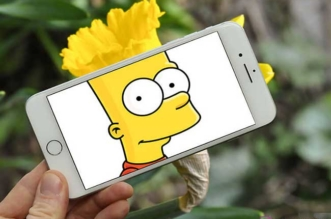 François Dourlen iPhone Simpsons Photos
