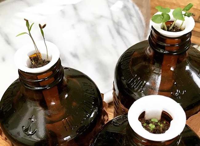 , Des Tubes pour Transformer vos Bouteilles en Jardinières (video)
