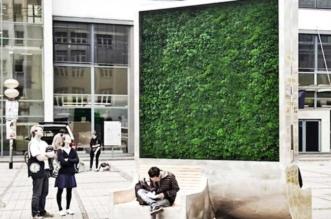 Mur Végétal Urbain City Tree
