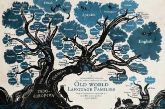 arbre langues illustration minna sundberg