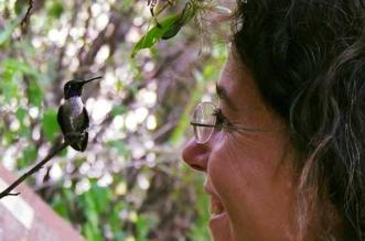 200 colibris melanie barboni