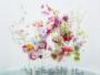 installation fleurs art ballet aquatique anne ten donkelaar