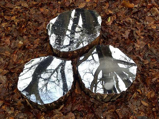lee borthwick miroir installation art bois 2 - Des Miroirs dans les Bois pour une Installation Artistique