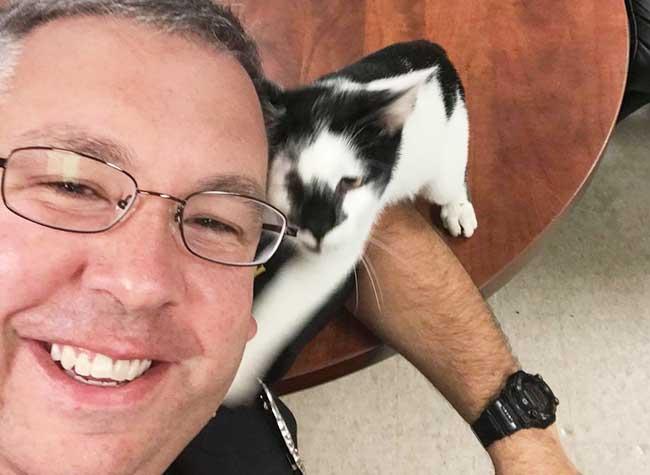Ce Chat Errant entre dans un Commissariat et Pose pour des Selfies