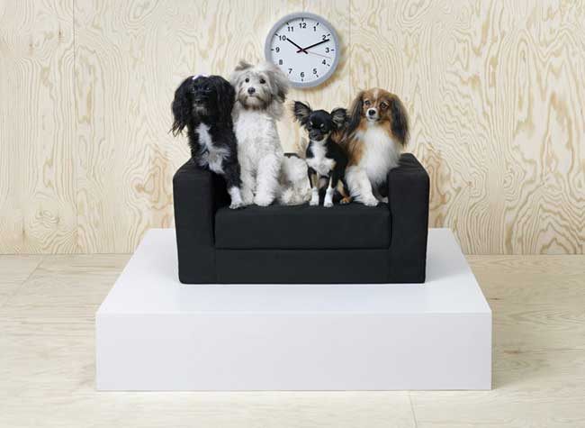 Ikea LURVIG Mobilier Chiens Chats