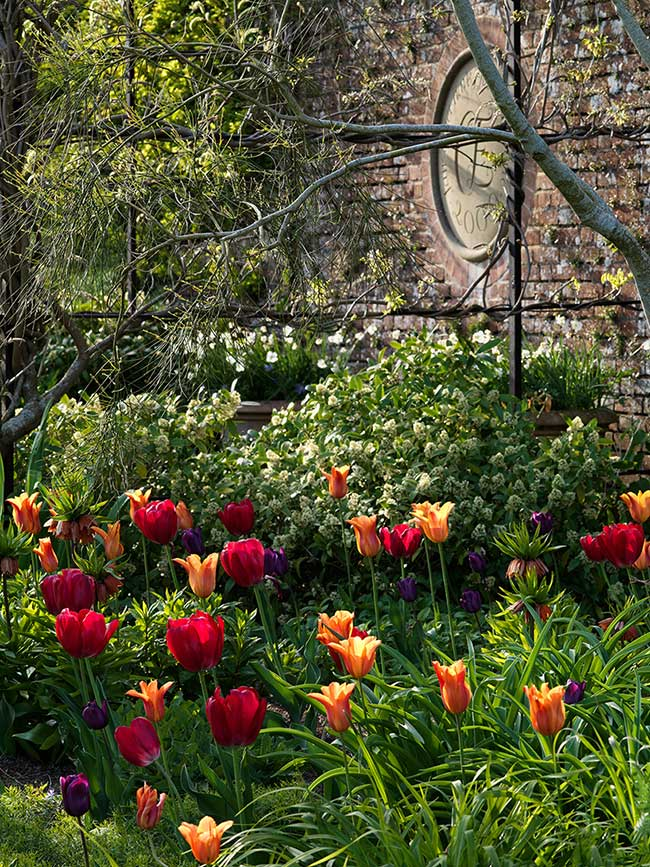 petworth-house-jardins-photographie, Promenade dans les Luxuriants Jardins Anglais du Manoir de Petworth