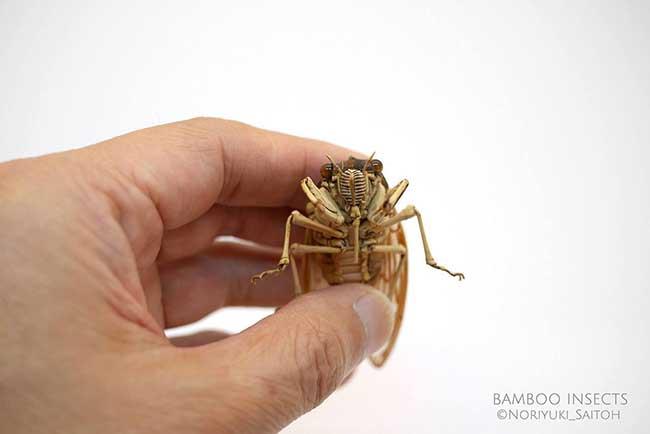 noriyuki saitoh sculptures insectes bambou 11 - Il Sculpte en Bambou d'Etonnants Insectes Grandeur Nature