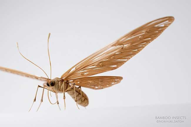 insectes-bambou-artiste-noriyuki-saitoh, Il Sculpte en Bambou d'Etonnants Insectes Grandeur Nature