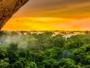 reboisement foret amazonie rock in rio