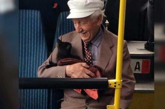 papi chat bus istanbul photo magnifique