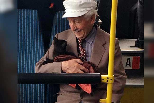 Papi chat bus Istanbul, Ce Papi et ce Chat dans un Bus à Istanbul Font Craquer le Monde Entier
