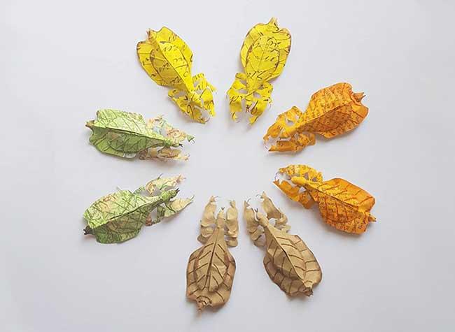 sculptures papier textile nature kate kato, Avec Papier et Textile elle Sculpte la Faune et la Flore