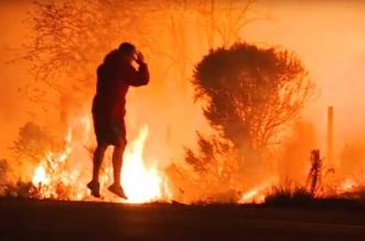 californie feu thomas homme sauve lapin
