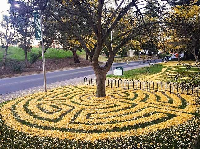 joanna hedrick land art feuilles mortes