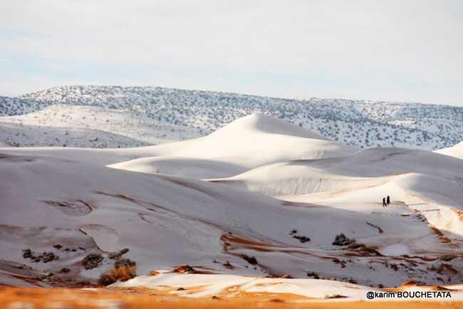 neige sahara algerie photographies 6 - Spectacle Surréaliste du Sahara Algérien Couvert de Neige (video)