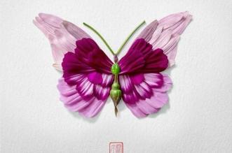 compositions fleurs insectes papillons raku inoue