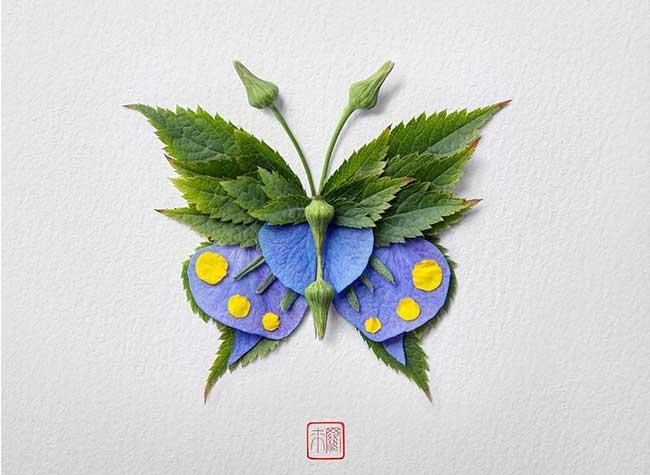 compositions fleurs insectes papillons-raku inoue, Papillons Enchanteurs Composés de Fleurs et Feuilles de Saison