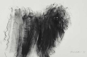 portraits chiens-dessins gribouillis encre crayon