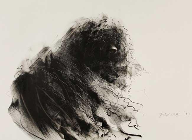 portraits chiens-dessins gribouillis encre crayon, Adorables Chiens Dessinés en Gribouillis au Crayon et à l'Encre