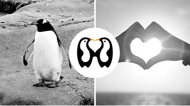 logos minimalistes shibu pg ingenieux, Logos Minimalistes Dessinés à Partir de Combinaisons de Photos
