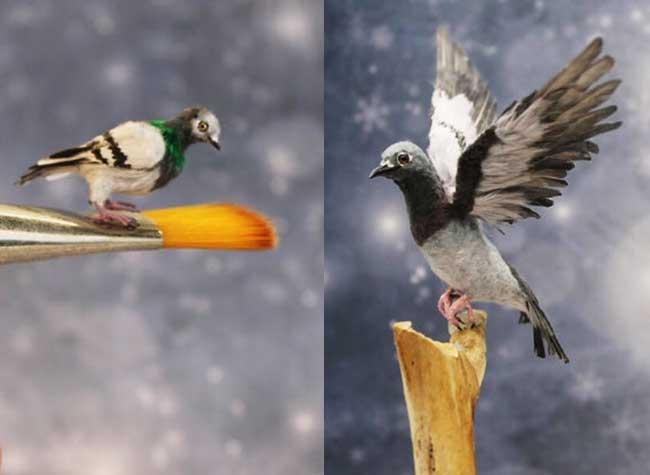 oiseaux sculptures miniatures katie doka