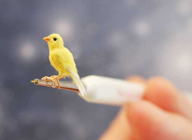 oiseaux sculptures miniatures katie doka, Fantastiques Sculptures Réalistes d'Oiseaux Miniatures