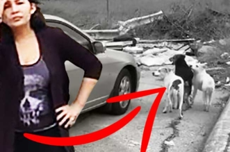 abandon chiens texas femme confrontation