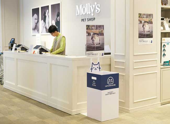 abrit capuches chats rues animalerie molly