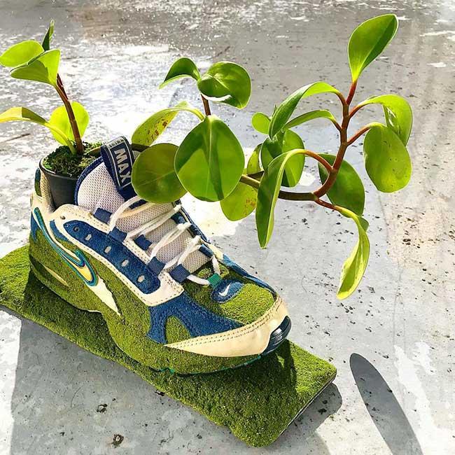 shoetree baskets plantes fleurs art kosuke sugimoto, Cet Artiste Transforme les Baskets Vintage en Jardinières