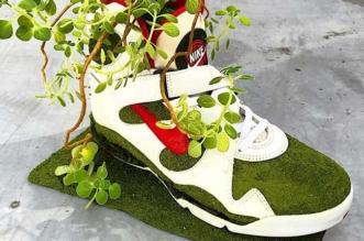 shoetree baskets plantes fleurs art kosuke sugimoto