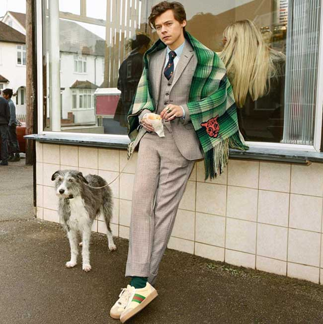 campagne gucci tailoring 2018 harry styles