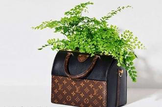 sacs luxe jardiniere detournes plantes fleurs
