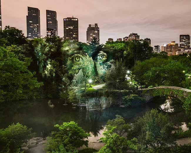 street art projection lumiere portraits new york
