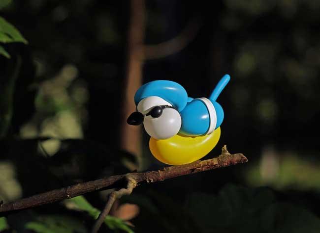 sculptures ballons oiseaux t james cook, Réalistes Sculptures d'Oiseaux en Ballons par T James Cook