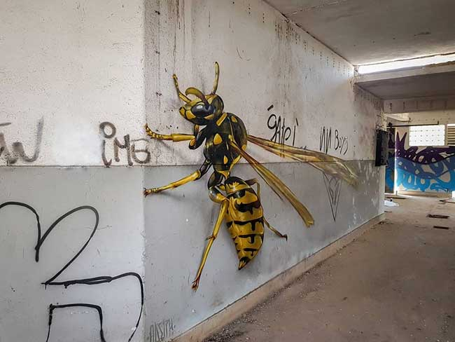 street art insectes anamorphose 3d realiste