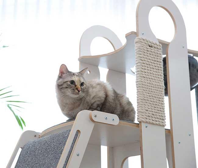 tuft paw tour arbre chat modulable design, Cet Arbre à Chat est le Terrain de Jeu Ultime Pour Explorateurs