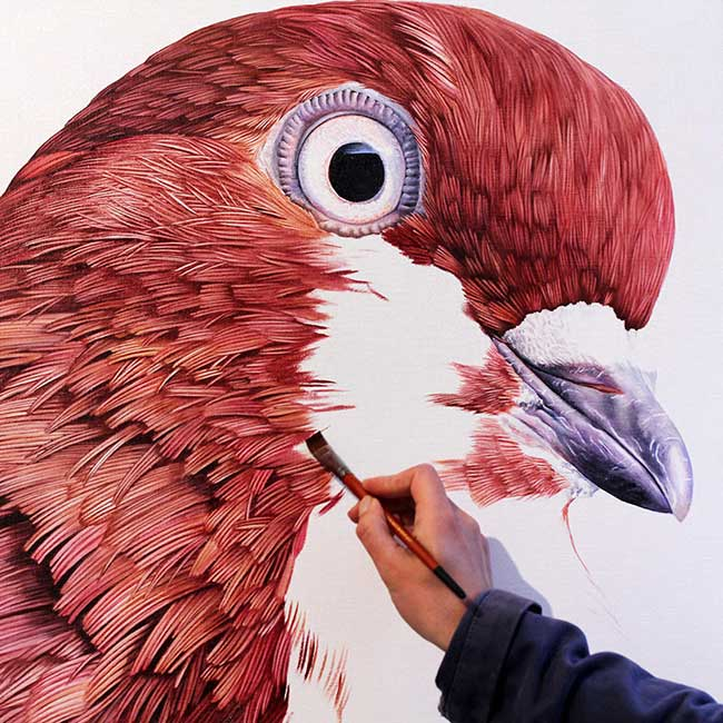 adele renault pigeon fresque peinture biset