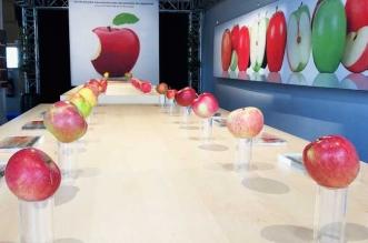 Un Apple Store avec de Vraies Pomme Y a que ca de Vrai