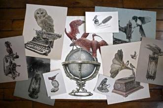 oiseaux-perches-dessins art steeven-salvat