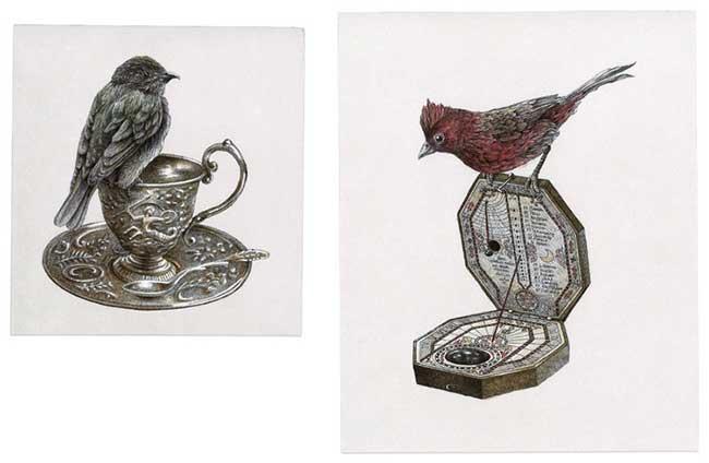 oiseaux-perches-dessins art steeven-salvat, Oiseaux Perchés Dessinés à l'Encre par Steeven Salvat
