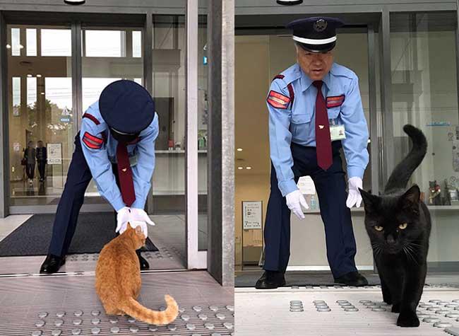 ken-chan-gosaku-chats-musee-hiroshima-onomichi-city-museum-art