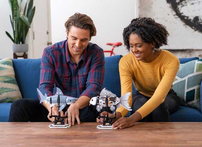 , FORMA, le Jeu de LEGO Mécanique pour Grands Enfants
